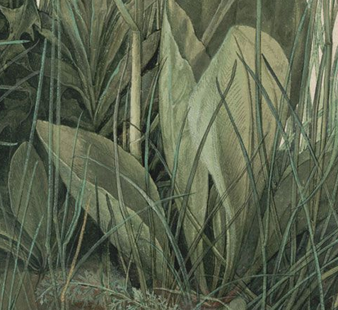 The Great Piece of Turf (detail)